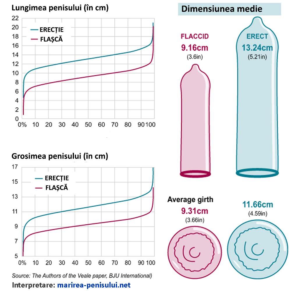statistici-marirea-simarimea-penisului